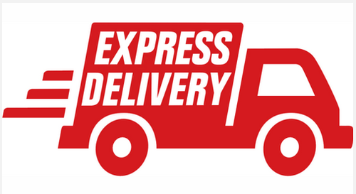 express-international-courier-services-500x500.png
